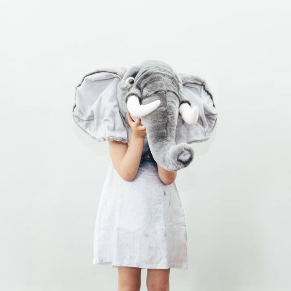 Wild and Soft Animal Trophy Head - George the Elephant Lifestyle