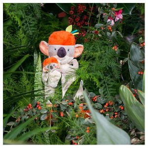 Moulin Roty Dans La Jungle Koco Activity Koala